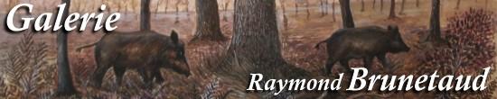 Raymond Brunetaud