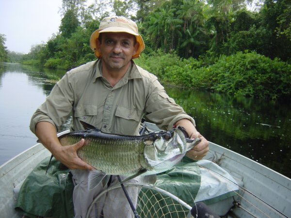 Image result for fish in french guiana
