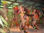Brésil danses